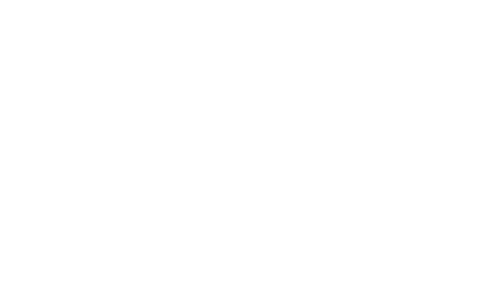 branding moby dick